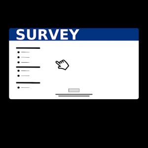 Survey art