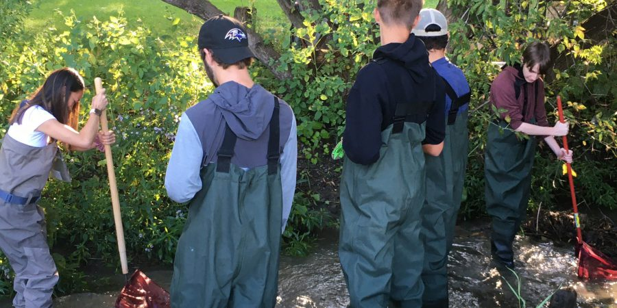 five students in protective clothing standing in a creek getting samples