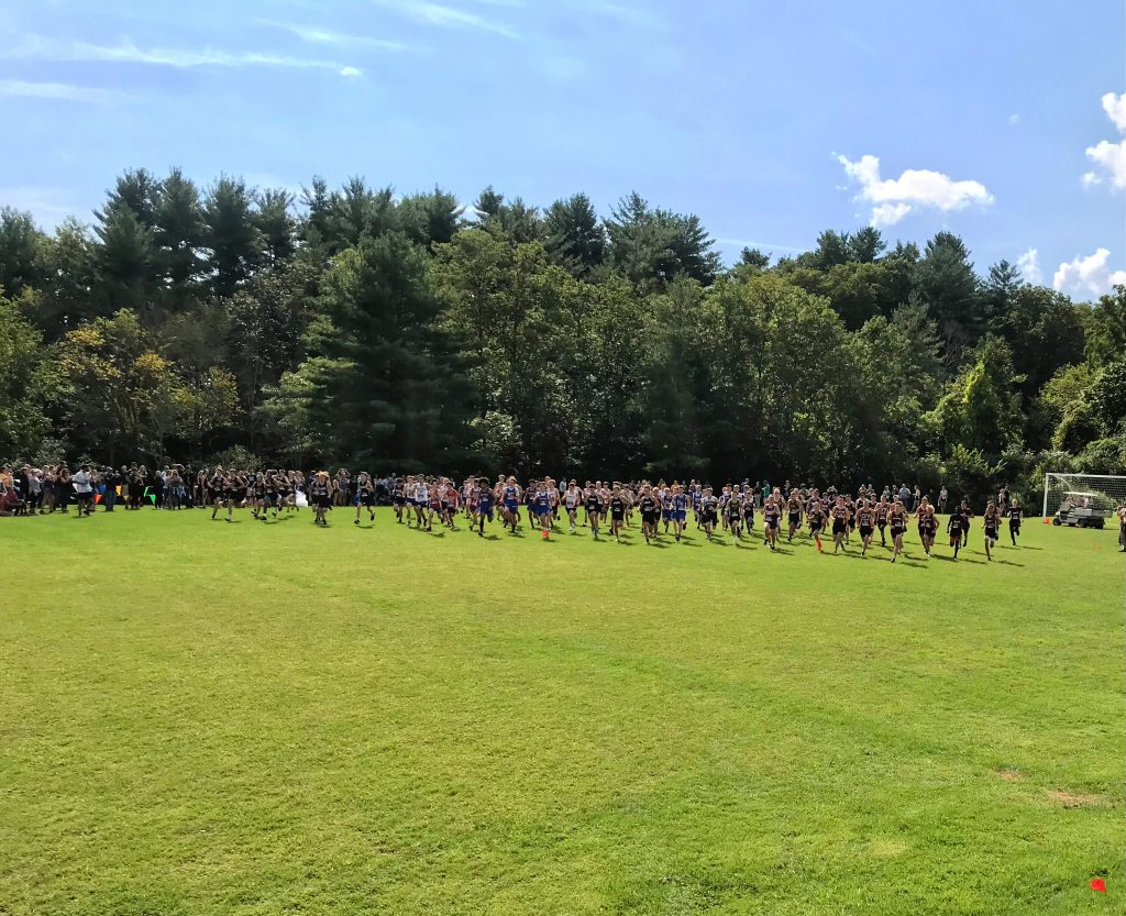 a sea of cross country runners traveling through a grassy field with blue sky and a few clouds